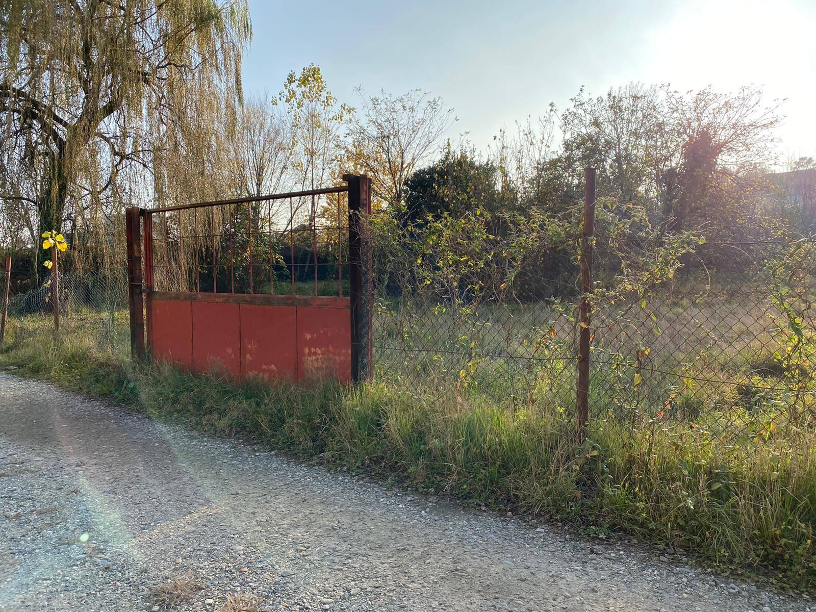 Alpignano (TO): Terreno Agricolo pianeggiante